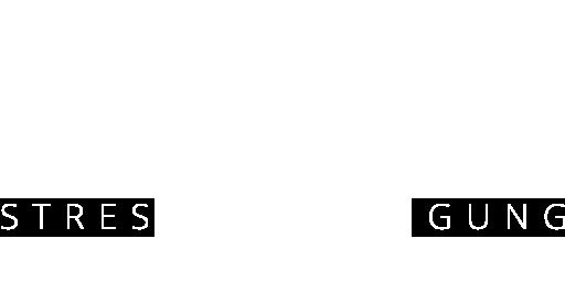 Logo - Stressbewältigung